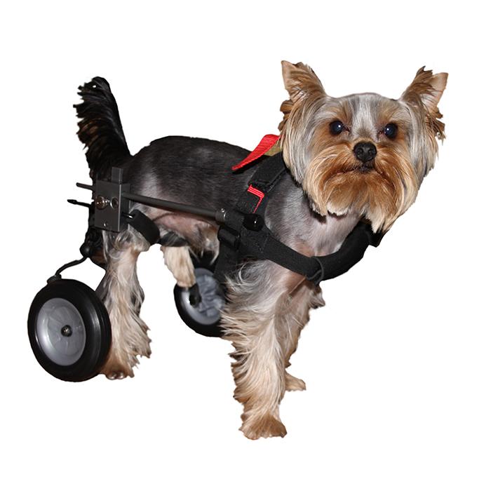 Инвалидная коляска для собаки (Регулируемая высота и длина. Размер 1)
